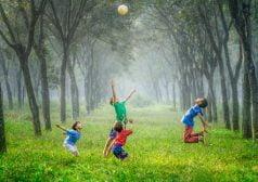 ילדים משחקים בכדור בחורשה